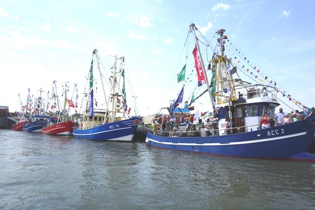 Krabbenkutter Flotte im HAfen von Dornumersiel